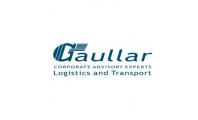 Página web para Gaullar L&T
