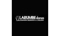 Página web para Larumbe Danza